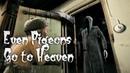 Даже Голуби Попадают в РАЙ 19 ☠️ Короткометражный мультфильм про смерть с косой