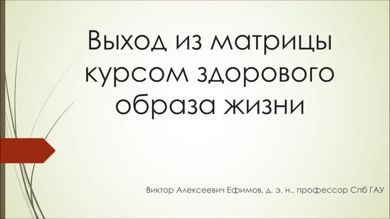 Выход из матрицы курсом здорового образа жизни Ефимов В А