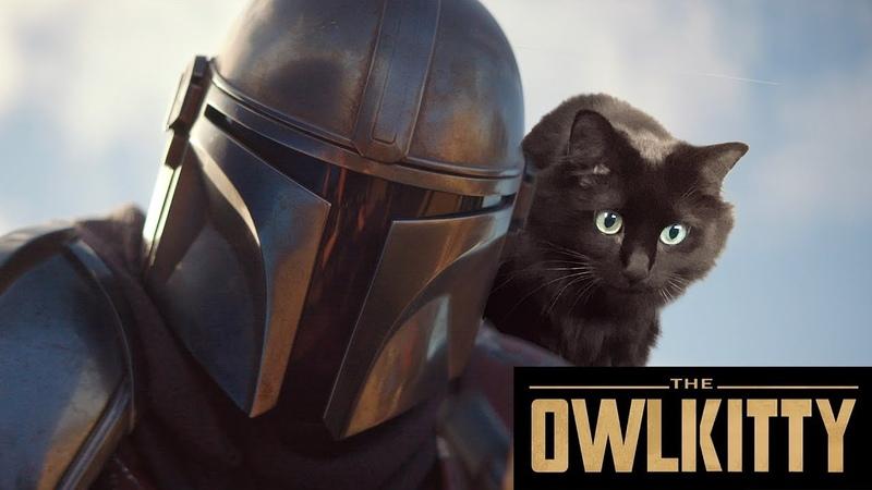 If Baby Yoda was a Cat (Mandalorian OwlKitty)