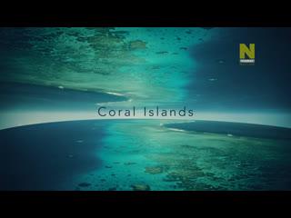 Большой Барьерный риф: Живое сокровище - Коралловые острова   3 серия из 4   2020   HD 720