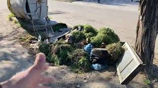 LIVE Бердянск 🌞 Утренняя ПРОбежка с PRO berdiansk