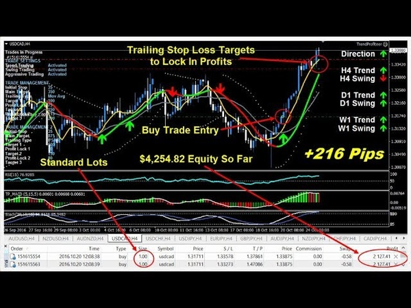 Automate Trades So You Can Exploit All Trends And Swings 24 Hours Per Day - trend profiteer