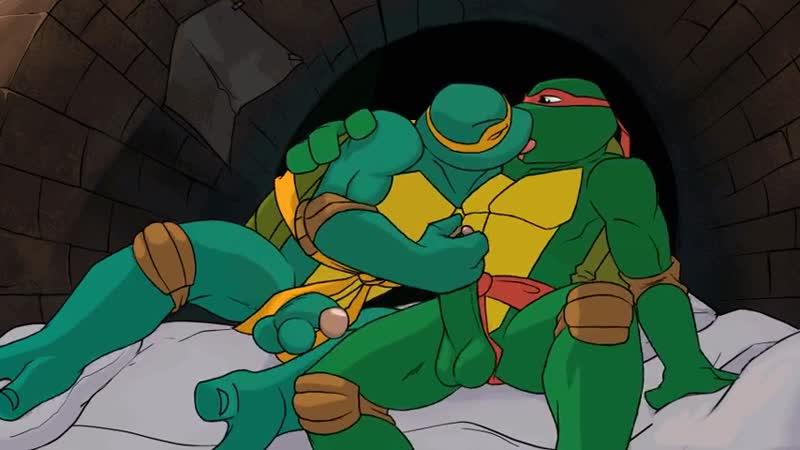 Ninja Turtles Porn