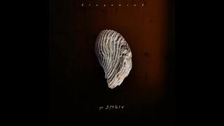 Namoic | microtonal album