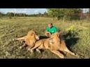 Очень ласковый дружок - легендарный лев Витёк