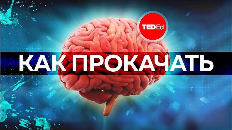КАК ПРОКАЧАТЬ СВОЙ МОЗГ 🧠 TEDed на русском