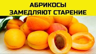 Абрикосы польза и вред для организма.  Пять причин начать есть абрикосы прямо сейчас.