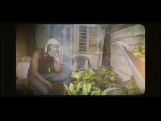 Jah cure ft. damian jr. gong marley marijuana