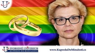 Daniela Kovářová 3. díl: Vyvlastnit manželství, rozšířit ho i pro homo páry, odmítá většina lidí