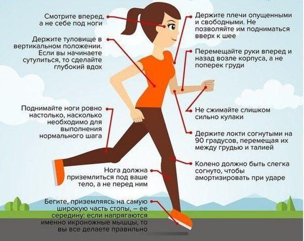 Бегать каждый день чтобы сжечь жир