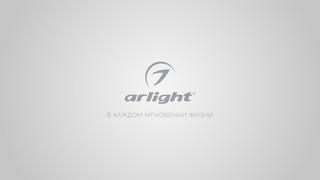 Arlight — в каждом мнгновении жизни