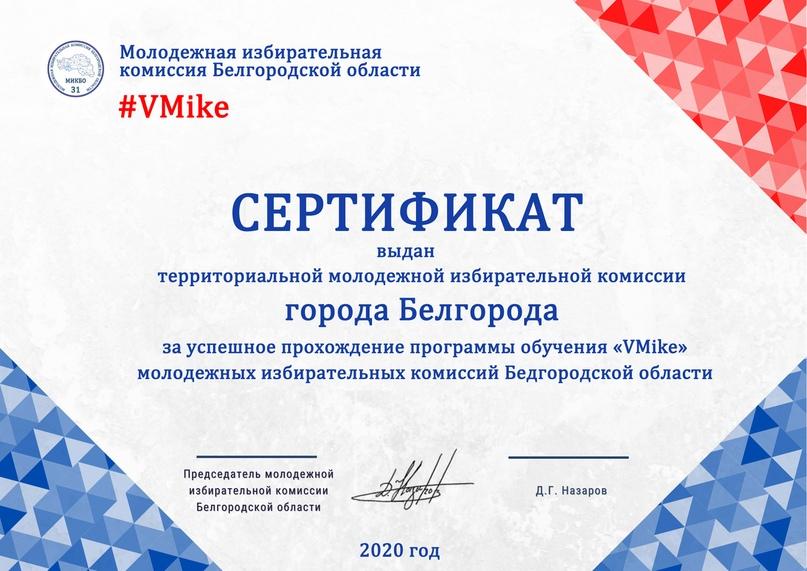Итоги программы обучения молодежных избирательных комиссий Белгородской области «VMike», изображение №16