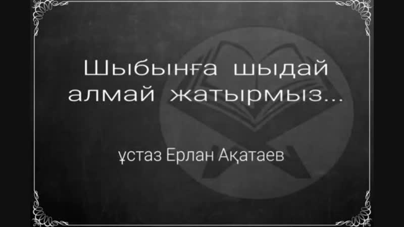 Шыбынға шыдай алмай жатырмыз ұстаз Ерлан Ақатаев