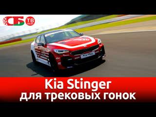 Kia Stinger для трековых гонок | видео обзор авто новостей