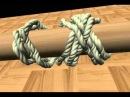Turk s Head Knot Animation