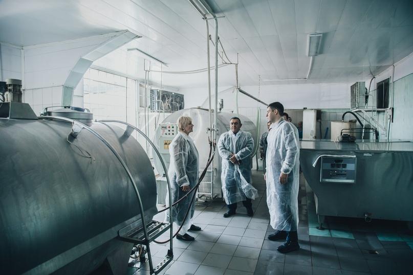 В хозяйствах Агрохолдинга кинокомпании «Союз Маринс Групп» увеличится производство молока