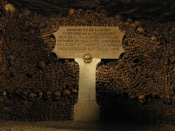 На месте предполагаемого захоронения Людовика XVI найдены человеческие останки