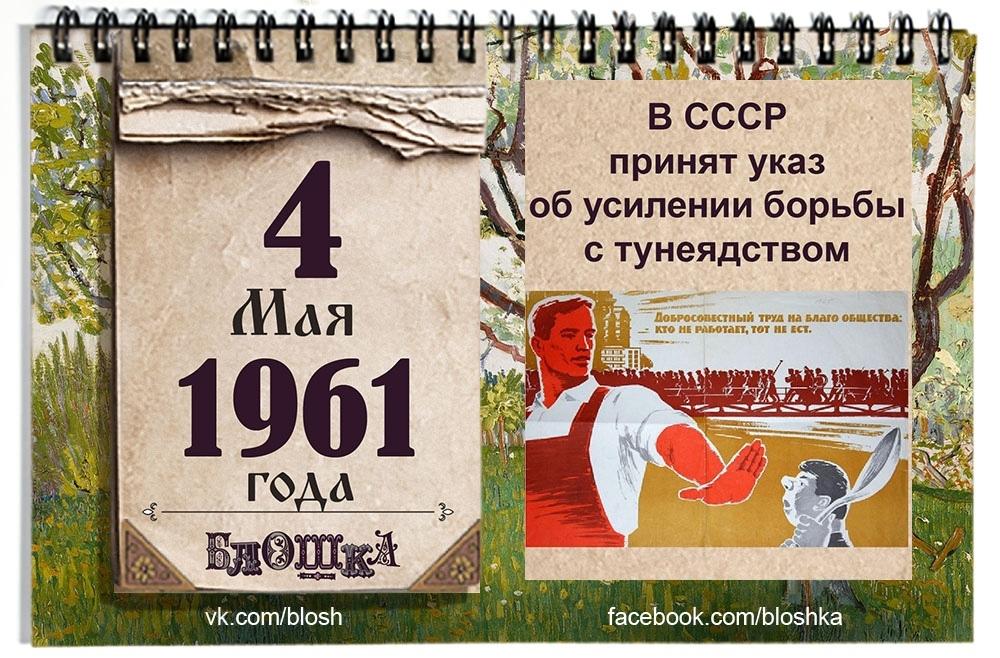 fbDJ4MAKCVo.jpg