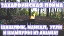 Захарьинская пойма   Природа   Шашлык