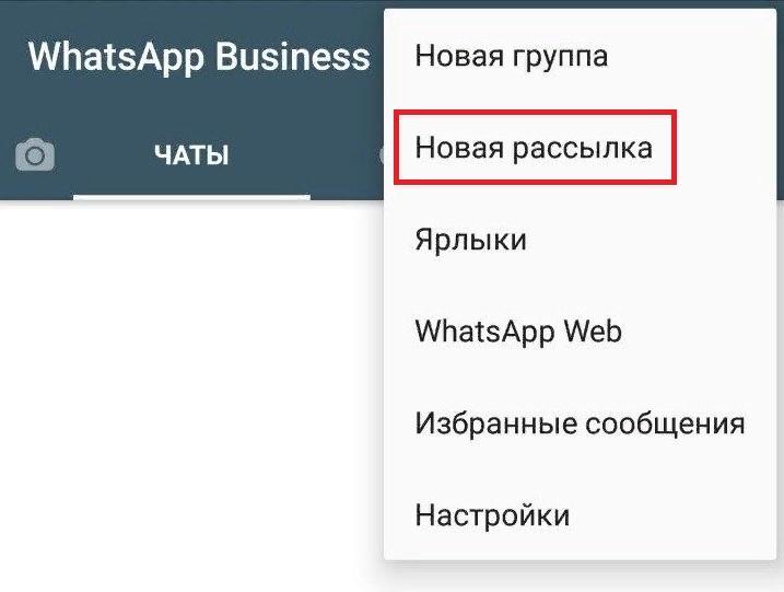 Как продвигать бизнес с WhatsApp: создаем профиль компании и настраиваем рекламу, изображение №31
