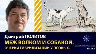 «Меж волком и собакой. Очерки гибридизации у псовых». Дмитрий Политов