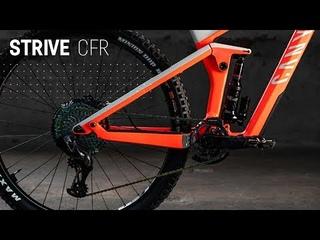 CANYON STRIVE CFR LTD   The Best Strive We've Ever Built.