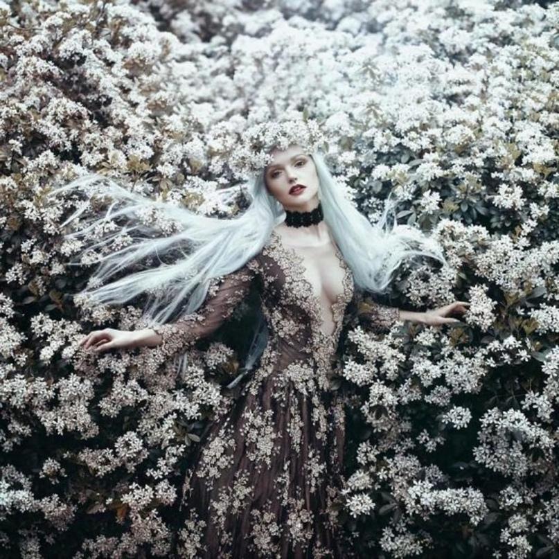 Любовный ритуал с белым цветком