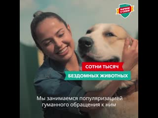 Девочка спасает бездомных животных
