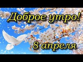 С Добрым Утром 8 Апреля!  Просыпайся Мир Прекрасен! Улыбайся Миру !