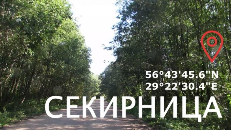 На Секирницу Бежаницкий район август 2018 Псковская область