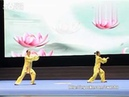 2014年全国武术套路锦标赛太极拳赛 女子双人杨式太极拳第一名