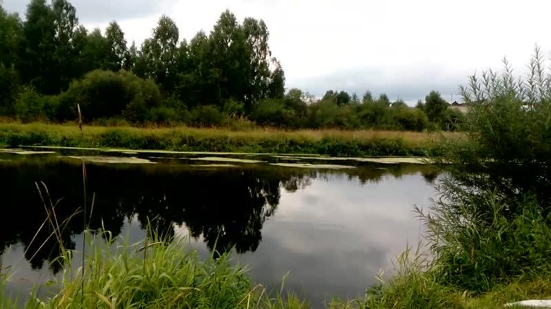 Река Чусовая Билимбай Доломитовый Выдра