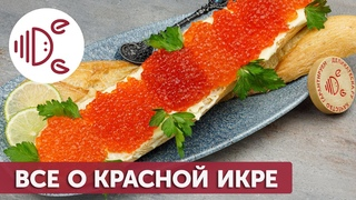Чем отличается красная икра разных рыб? (Деликатеска.ру)