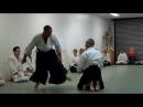 Flynn Sensei: Hamni hamdachi ryotedori shihonage