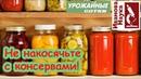 5 досадных ОШИБОК консервации овощей. Опасна ли сенная палочка? Как получить вкусный продукт?