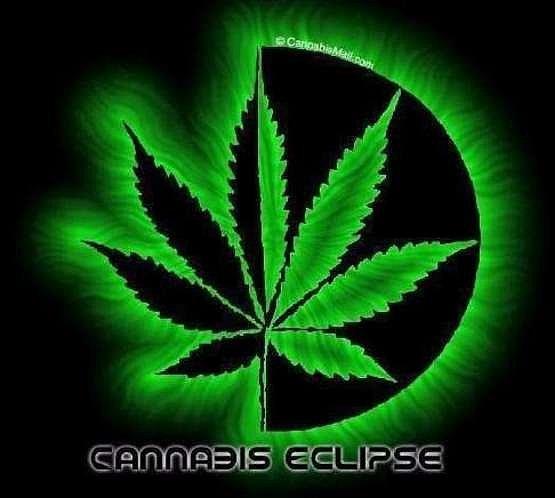 Марихуана фото на аву в вк побочный эффект от курения марихуаны