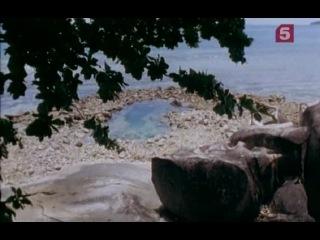Discovery Channel Острова сокровищ Тайны острова Маэ 4 серия