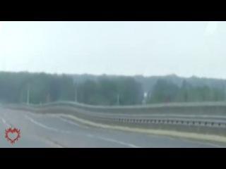 СОБАКА танцевалка РАСКАЧИВАЕТ МОСТ В ВОЛГОГРАДЕ (видео прикол)