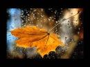ИРАКЛИ . Я тебя люблю, Осень!
