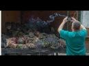 Солдаты необъявленной войны Россия в Украине, война, груз 200