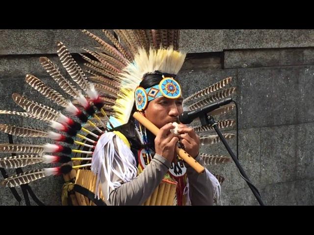 Héctor Loza талантливый музыкант из Эквадора