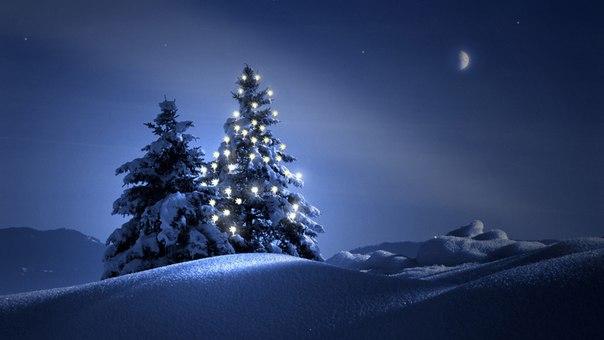 Скачать Обои На Компьютер Зима Новогодняя Ночь