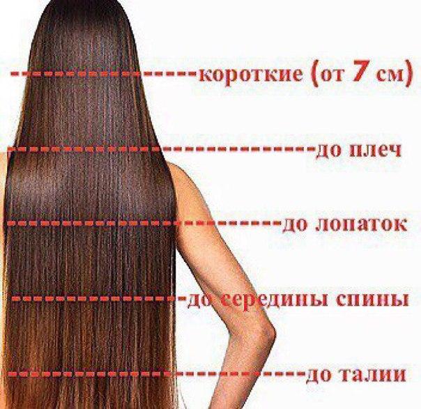 Картинки разметки волос сегодня