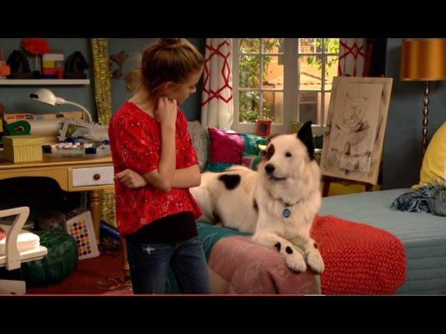 Собака точка ком (Сезон 2 Серия 2)