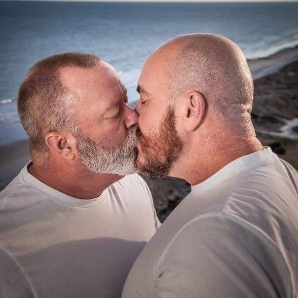 Gay jewish bears