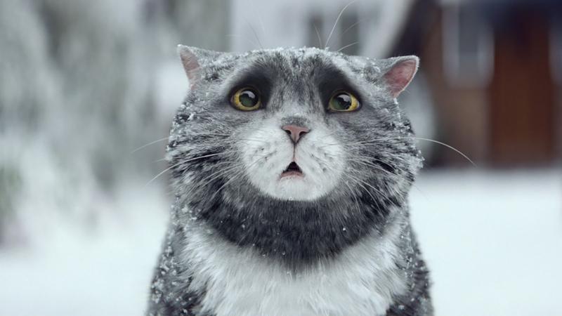 Calamitous cat Mog stars in Sainsburys Christmas campaign