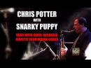 Chris Potter with Snarky Puppy - Lingus (AUDIO RECORDED DIRECTLY FROM MIXER AND MULTICAMERA SHOOT)