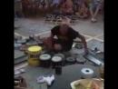 Хакики барабанчи