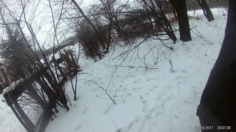 Спасение умирающей собаки с села Лысовка, Донецкая область.Часть1