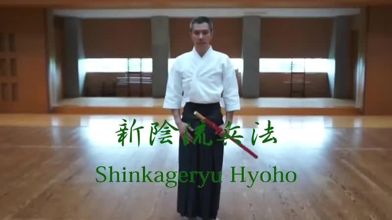 新陰流兵法勢会 Shinkageryu Hyoho